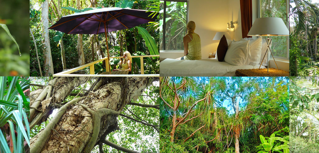 Villa Marine Cairns rainforest apartment collage