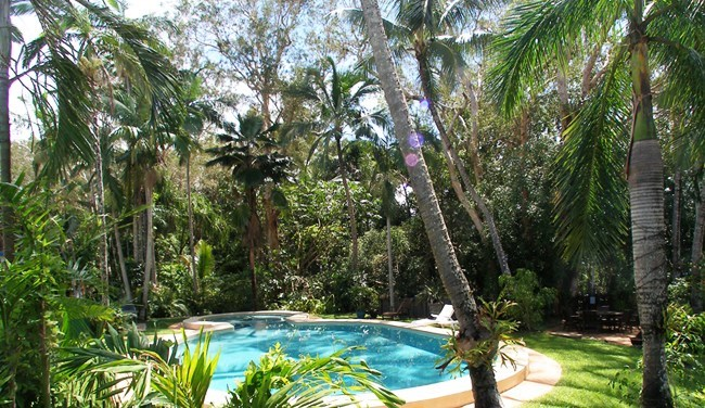 Pool and rainforest Villa Marine YK